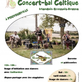 Concert_bal_celtique_Rosin_the_Bow